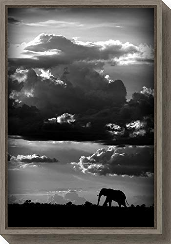 Savannah Poster Bed - Amanti Art He Walks Under an African Sky by Wild Photo Canvas Art Framed