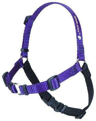SENSE-ation No-Pull Dog Harness - Purple Small