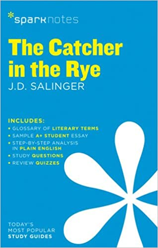 Essay On Your School Literary Analysis Essay On The Catcher In The Rye To Kill A Mockingbird And  The Catcher Essay About Death Penalty also Hotel Rwanda Review Essay Admissions Essay Editing  Fast And Affordable How To Write A  Essays On Imperialism