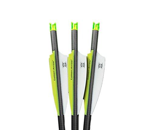Lumenok Lumen-Arrow 20-Inch Carbon Bolts with Crescent Bolt End (3-Pack), Green