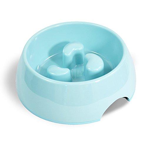 Martha Stewart Slow Feeder Pet Bowl, Blue, 6 fl. oz. by Martha Stewart