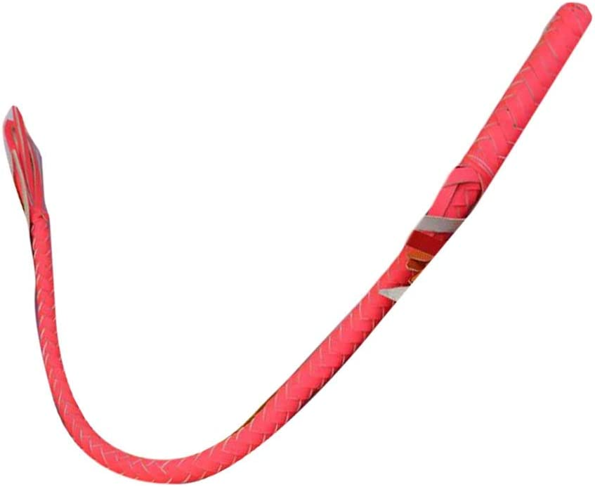 PANDA SUPERSTORE Pink Braided Horse Riding Crops Whip Long Horse Whip,70 cm