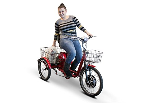 EW 29 Electric Trike Adult Tricycle E Wheels 500 Watt Pedaling