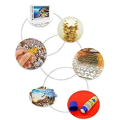2PC 120ML Non-Toxic Puzzle Glue with Trowel Applicator Puzzle Accessories Puzzle Saver Suitable for 500 1000 Paper Puzzle, 4.22oz: Toys & Games