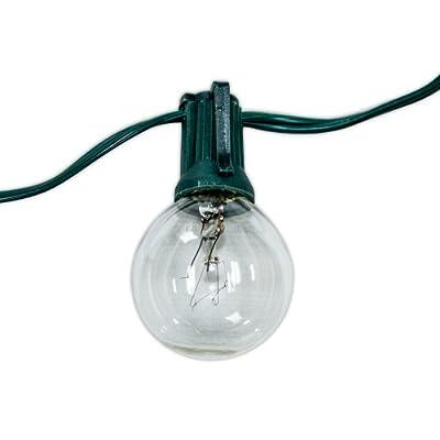 Aspen Lights C7G100C Global String Lights 100'/100 Lights Clear Bulb Green Cord, 20 Gauge