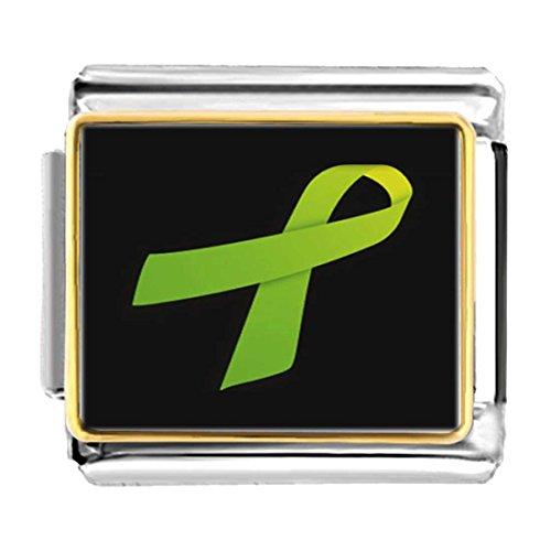 Green Ribbon Italian Charm - GiftJewelryShop Gold Plated Light Green Aids Ribbon Bracelet Link Photo Italian Charm