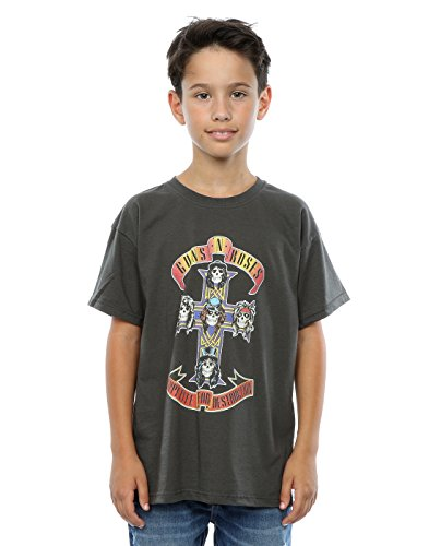 - Guns N Roses Boys Appetite for Destruction T-Shirt 3-4 Years Light Graphite