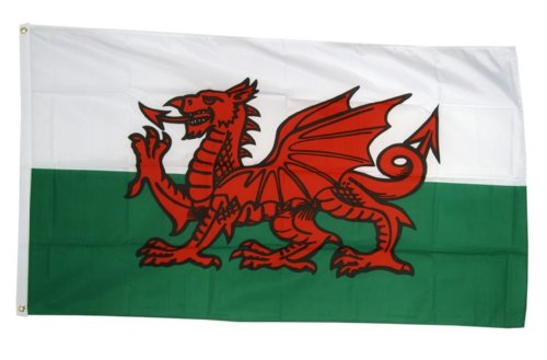Red Wales Waliser Drache Nationalflagge 5ft x 3ft