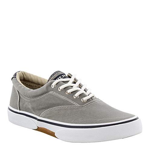 Sperry Halyard LL CVO Grey 10