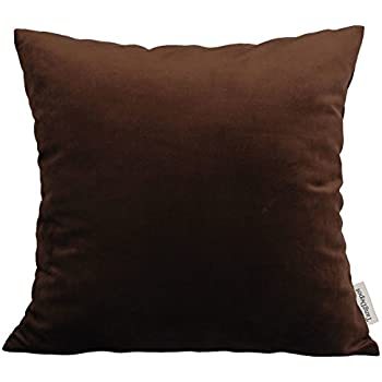 Amazon.com: MIULEE Pack of 2 Velvet Pillow Covers Decorative ...