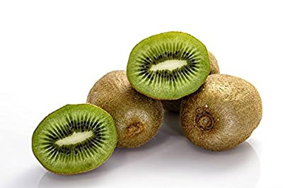 Thailand Mini Bonsai Kiwi Fruit - Sweet Delicious Plant - 200 Seeds