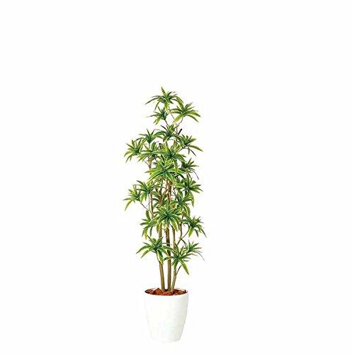 ソングオブインディア FST 150cm 白鉢 (tk-2016-98903) フェイクグリーン ギフトラッピング、お祝札対応可 B071WLJRW8