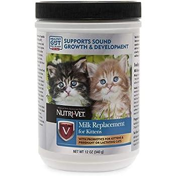 Amazon.com: Reemplazo de leche para gatitos de KMR, Polvo ...