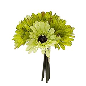 Sweet Home Deco 8'' Silk Artificial Gerbera Daisy Flower Bunch (W/ 7stems, 7 Flower Heads) Home/Wedding (Lime Green) 3