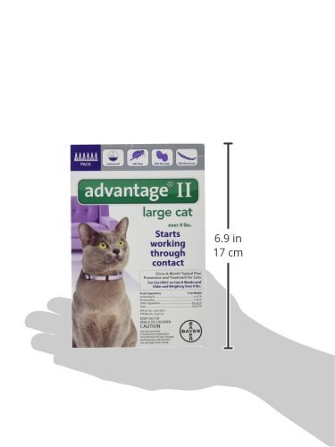 Advantage II Monthly Flea Treatment - Large Cat - 6 ct