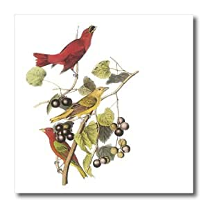 ht_179006_3 PS Vintage - Red and Yellow Birds vintage - Iron on Heat Transfers - 10x10 Iron on Heat Transfer for White Material