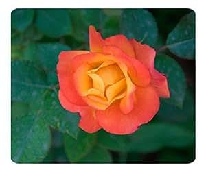 Decorative Mouse Pad Art Print Landscape and Plants Orange Rose 4