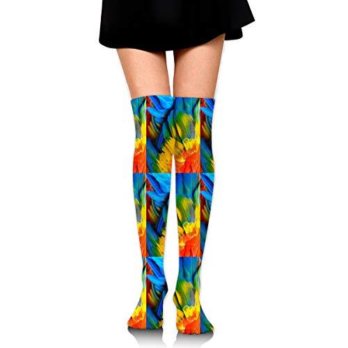 Women's Long Socks Close Up Of Scarlet Macaw Bird's Feathers Long Over Knee High Nursing Sock ()