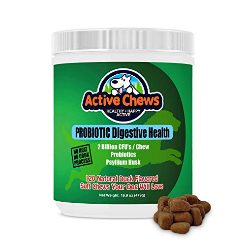 Active Chews Premium Probiotics for Dogs with Digestive Enzymes for Dogs from, Relieves Dog Diarrhea Upset Stomach Bad Breath Hot Spots for Dogs, 120 Chews with 4 Bill CFUs per 2 Chews