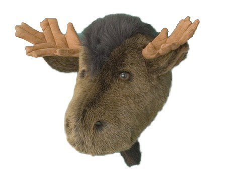 Moose Head Stuffed Animal Wall Mount Hunter (First Class Wall Mount)