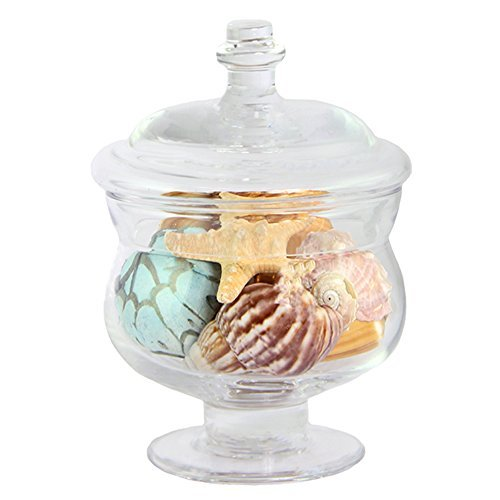 Apothecary Jar Wedding Candy Buffet Canister 5.5''H, Hand Blown