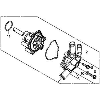 Marvelous Amazon Com Honda 19200 Mgz 305 Water Pump Automotive Wiring 101 Ferenstreekradiomeanderfmnl