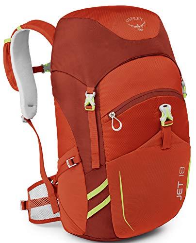 6fec1942bf96 Osprey Packs Jet 18 Kid s Backpack