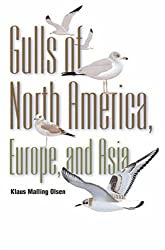 Gulls: Of Europe, Asia, and North America (Field Guides)