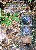 Letargo e riproduzione delle specie mediterranee. Genere testudo tecniche avanzate di allevamento