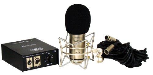 (BadAax GT-2B Diaphragm Tube Condenser Microphone)