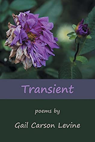 book cover of Transient