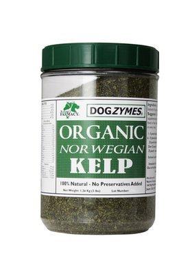DOGZYMES Organic Norwegian Kelp for Pets, 12-Ounce