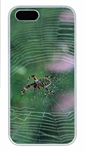 Hot iPhone 5S Customized Unique Print Design Spider With Colorful Stripes New Fashion PC White iPhone 5/5S Cases