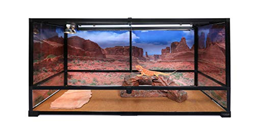 - Carolina Custom Cages Terrarium, Tall Extra-Long 48Lx18Dx24H, Easy Assembly