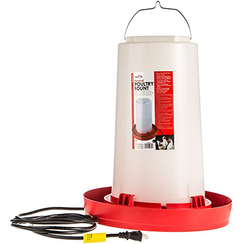 Allied Precision Heated Pet Bed - Allied Precision Ind 33 3.3-Gallon Heated Chicken Waterer