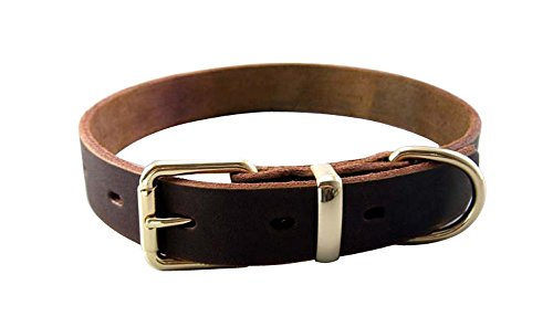 ZEEY Adjustable Luxury Super Strong Genuine Leather Pet Dogs Collar, Adjustable Neck Size Belt Design Collar For Small/Medium Dogs With Dog Leash Hook (XL (25.5 to 29 Inch)) (Super Adjustable Strong Collar)
