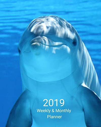 2019 Weekly and Monthly Planner: Blue Dolphin Daily Organizer -To Do -Calendar in Review/Monthly Calendar with U.S. Holidays-Notes Volume 48