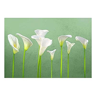 Amazing Artistry, Crafted to Perfection, Arum Lilies with Vibrant Green Textured Background Wall Mural