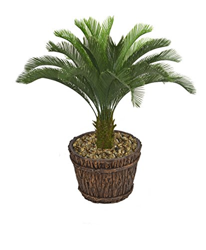 Laura Ashley VHX111217 Cycas Palm Tree Planter, 56'' by Laura Ashley