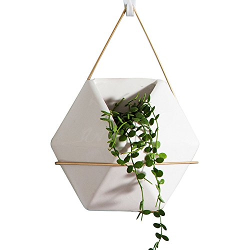 Frideko 7.9 Inches White Ceramic Geometric Hanging Flower Planter / Succulents Pot / Cactus Pot / Moss Pot for Indoor Outdoor Wall Decoration ~ Adorable Gift (Type B) - Pack of 6 pcs by Frideko
