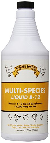 Rooster Booster B-12 Liquid, 32-Ounce
