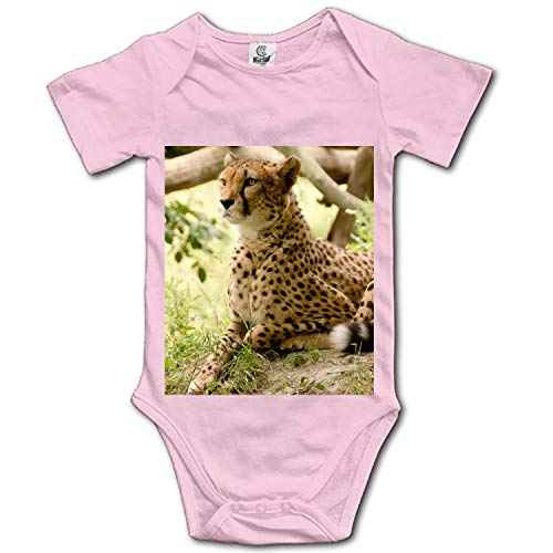 Baby Leopard On The Grass Bodysuits Rompers Outfits Summer Clothes,Short Sleeve (Short Carlino)