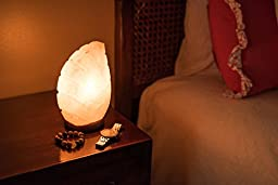 Natural Himalayan Salt Lamp on Solid Neem Wood Base | Romantic Leaf Shape | Dual Voltage (AC 230V/110V), UL Listed, 6\' Cord & Dimmer Switch by Uniwaresal, 6.2 lbs (Pink)