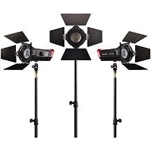 Aputure LS-mini20 Light Storm Flight Kit (DDC) with Light Stands