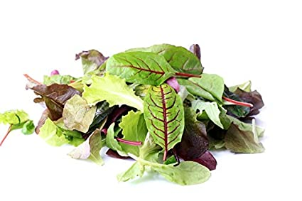 Baby Leaf - mezcla elegante