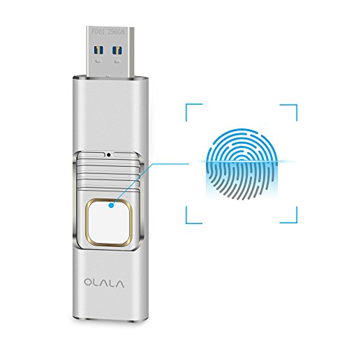 Fingerprint Encrypted Flash Drive OLALA 256GB USB 3.0 High-speed Retractable Dual Storage Security Memory Stick (Silver) by OLALA