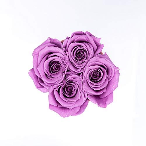 Flieder Tamaño tercio Flowers A Rosas Juli redondo En Al velvet Rosen Menos Xs Infinity Haltbare 3 1 Años wT5x5qX8U
