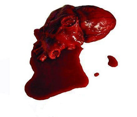Simulated Body Parts Heart (1/Pkg) Pkg/12 by DOMAGRON
