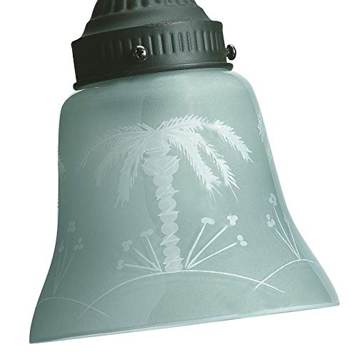 Fanimation G235, Frosted/Tropical Glass