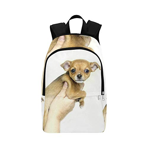 Sweet Pea Chihuahua - YUMOING Puppy Dogs Animals Sweet Chihuahua Casual Daypack Travel Bag College School Backpack for Mens and Women